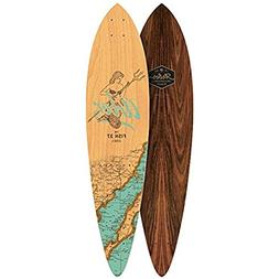 Arbor Fish 37 Longboard Deck Groundswell Series 2017 New Wit