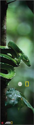 nat geo spirit grip sheet green