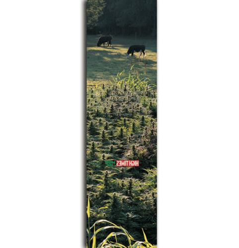 Mob Skateboard Griptape High Times Medley Field of Dreams 9""