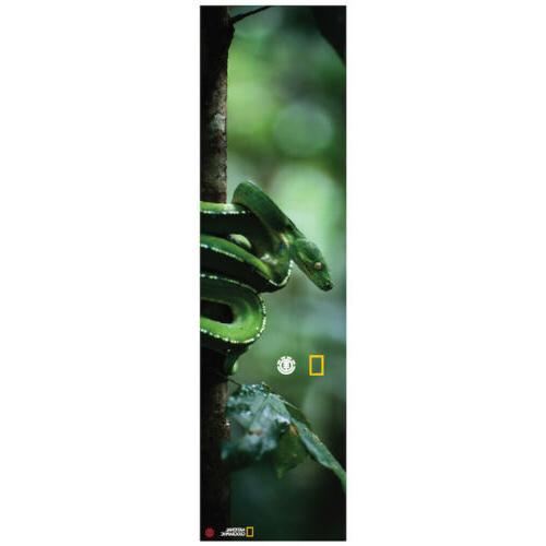skateboard griptape national geographic spirit snake 9